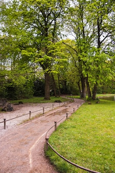 Caminho através do parque com árvores verdes