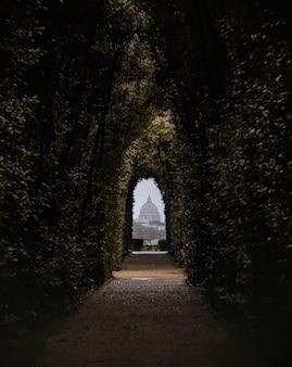 Caminho cercado por árvores sob a luz solar com um edifício no fundo desfocado