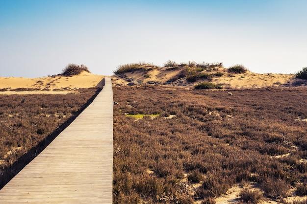 Caminho de calçadão de praia de madeira marrom longe