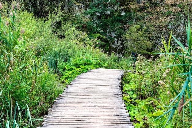 Caminho de madeira acima da água no parque nacional de plitvice.