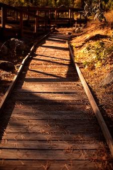 Caminho de madeira com corrimão