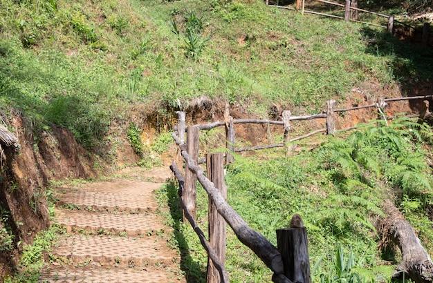 Caminho de pedra do tijolo com o trilho de madeira.