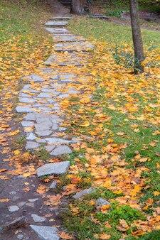 Caminho de pedra e folhas amarelas caídas no chão no parque da cidade no outono