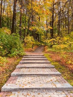 Caminho ecológico verde vazio no outono, vista de baixo para cima. folhas vermelhas caídas na trilha. moscou