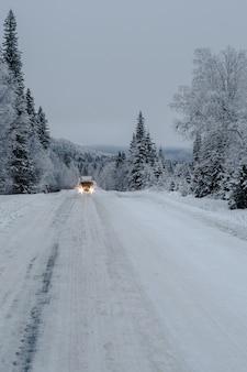 Caminho em uma floresta coberta de neve com um caminhão e árvores