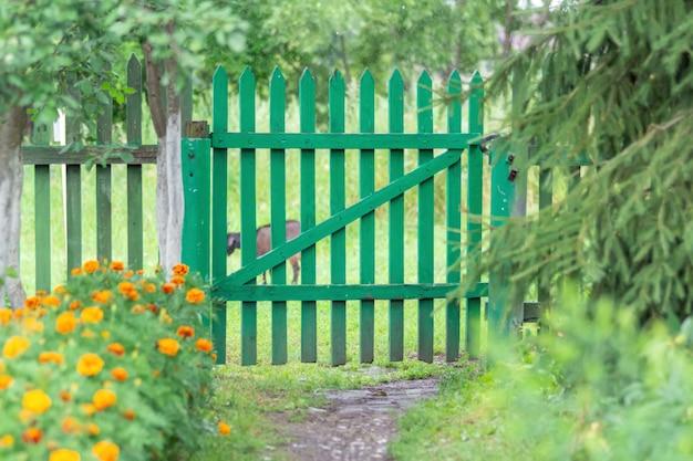 Caminho entre flores e árvores até a cerca velha com um portão verde