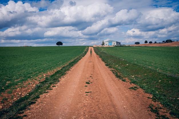 Caminho estreito em um campo gramado verde sob um céu nublado
