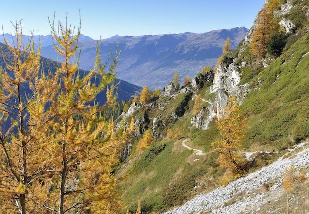 Caminho íngreme, atravessando uma bela montanha no outono com larches amarelos