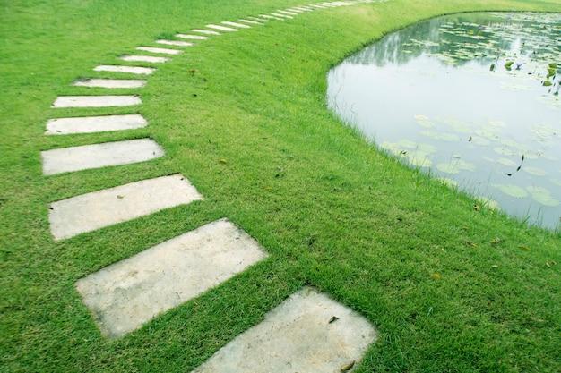 Caminho no jardim com lagoa waterlily.