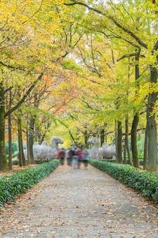 Caminho pelas estátuas no mausoléu de ming xiaoling