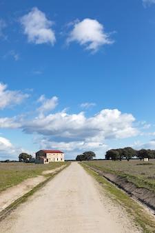 Caminho solitário no meio do campo sob um lindo céu