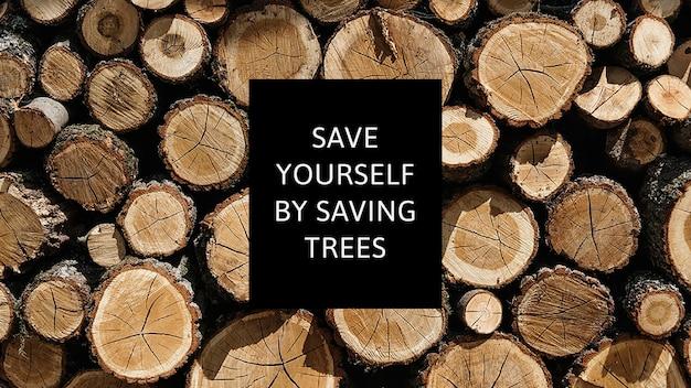 Campanha de reflorestamento de modelo de conscientização ambiental