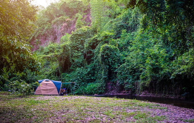 Camping e tenda no parque natural