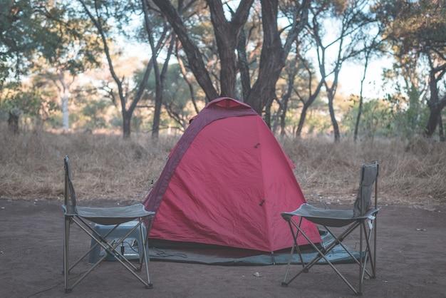 Camping na floresta selvagem africana