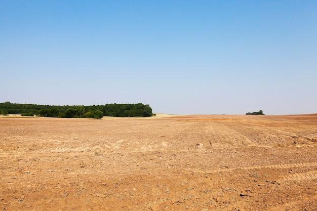 Campo agrícola arado após a colheita