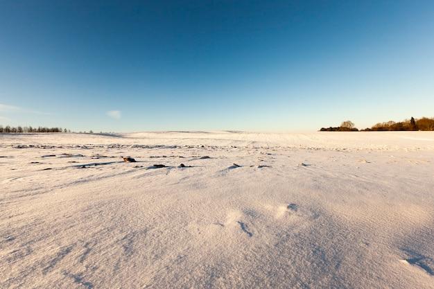 Campo agrícola em uma temporada de inverno