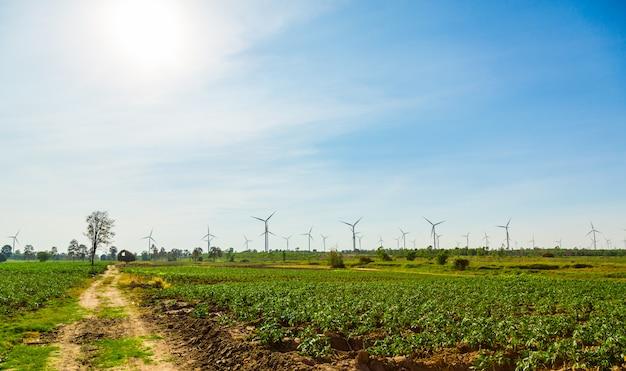 Campo agrícola gerador de turbina eólica