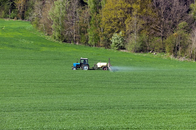 Campo agrícola verde com cereais, que são processados por um trator