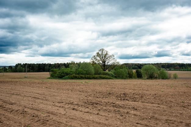 Campo arado na primavera preparado para a semeadura.