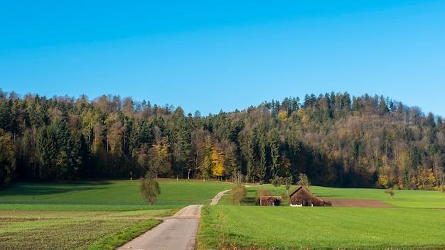 Campo campo, com, céu azul