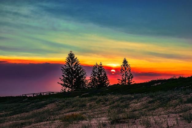 Campo coberto de grama com silhuetas de árvores durante um belo pôr do sol à noite