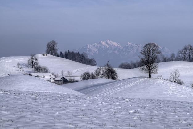 Campo coberto de neve com árvores nuas e montanhas à distância