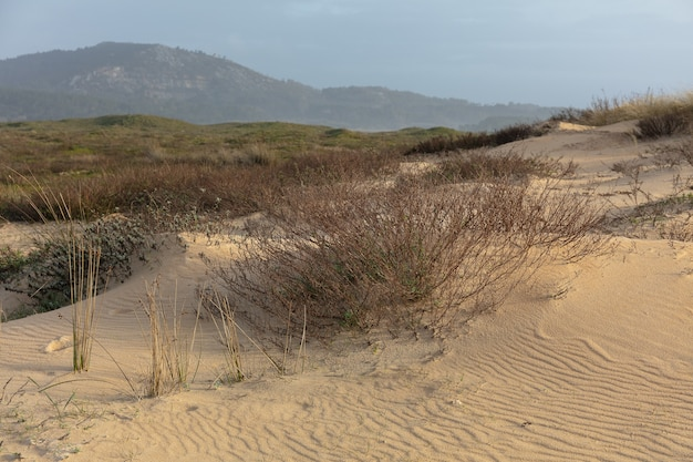 Campo coberto de vegetação e areia cercado por colinas sob um céu nublado