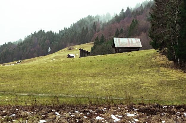 Campo com dois celeiros de madeira cercados por florestas cobertas de névoa sob o céu nublado