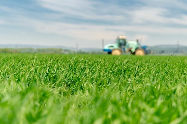 Campo com grama para gado. trator que fertiliza um campo no fundo, borrado. copie o espaço