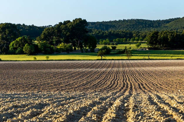 Campo cultivado com solo arado de cores diferentes. Foto Premium