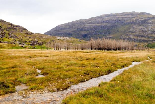 Campo de calha do rio escocês. vista em perspectiva do rio. panorama escocês