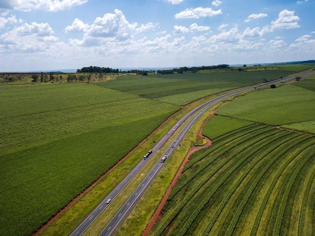 Campo de cana-de-açúcar aéreo e rodovia no brasil.