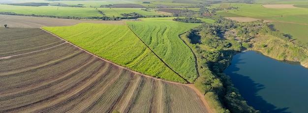 Campo de cana-de-açúcar aéreo no brasil com belo lago