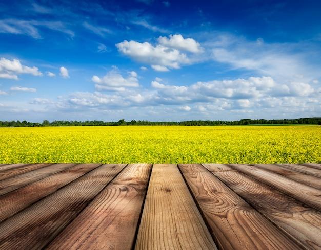 Campo de canola amarelo com céu, piso de tábuas de madeira