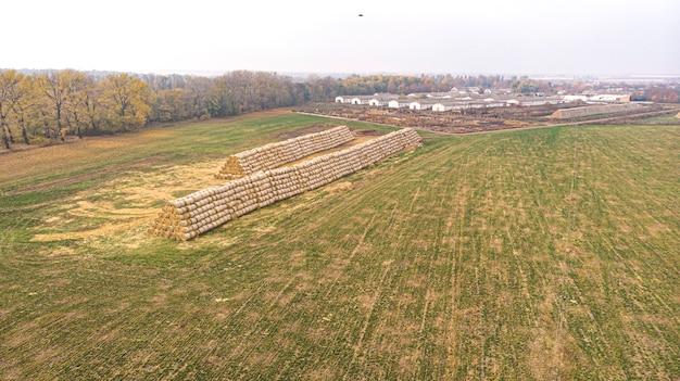 Campo de fazenda de agricultura de colheita de feno. palheiro em campo agrícola