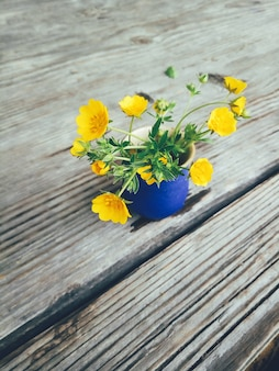 Campo de flores amarelas em vaso azul