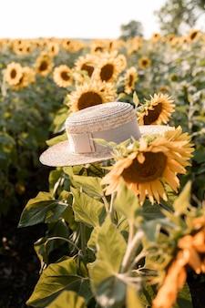 Campo de girassóis com chapéu de verão