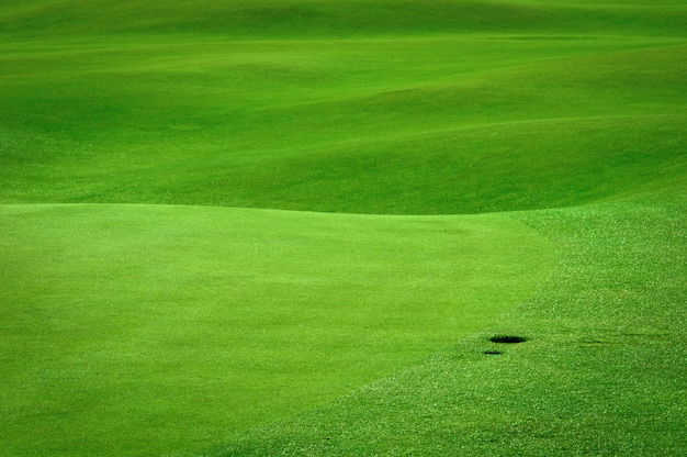 Campo de golfe com um buraco de bola