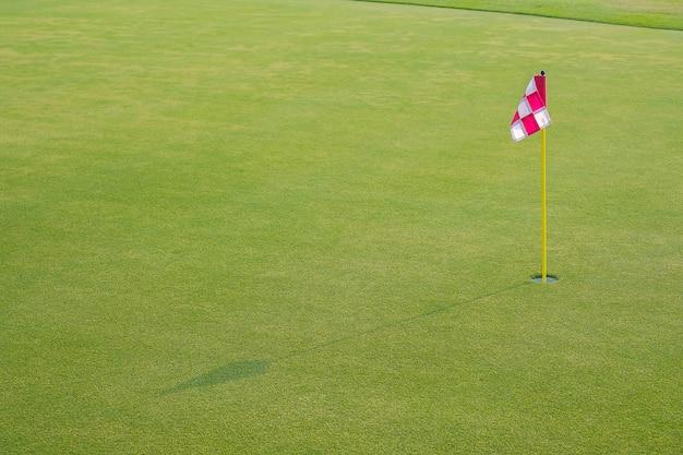 Campo de golfe lindo com bandeira e buraco