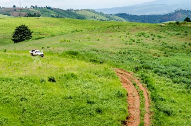 Campo de grama e carro borrado