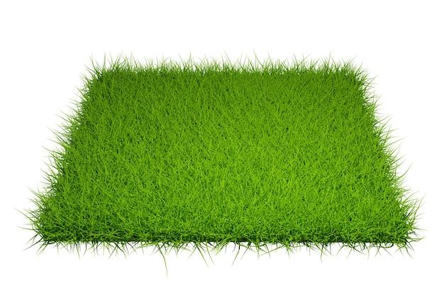 Campo de grama isolado no fundo branco com traçado de recorte