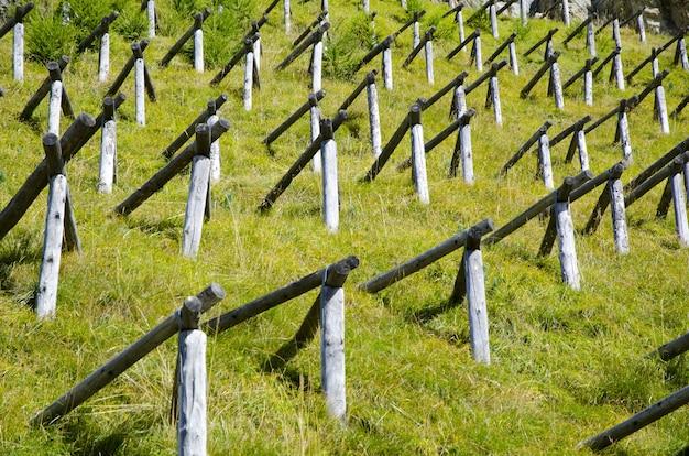 Campo de grama verde com postes de madeira em forma de pirâmide