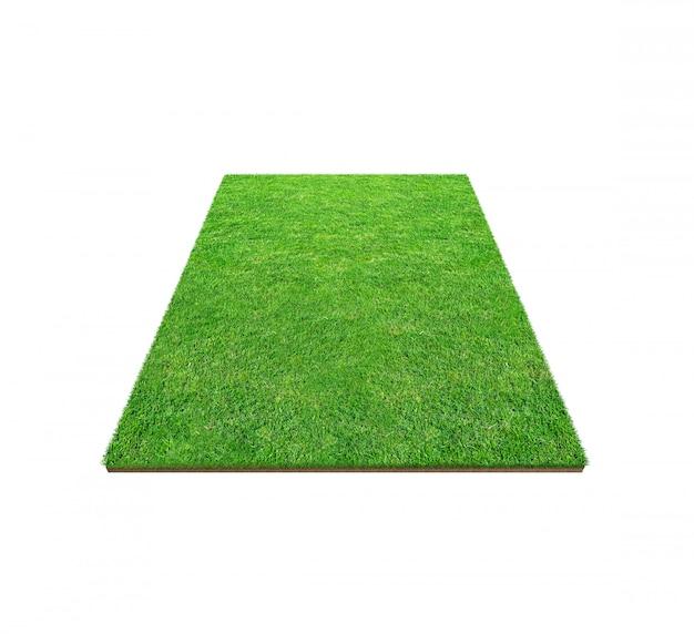 Campo de grama verde isolado no branco com trajeto de grampeamento.