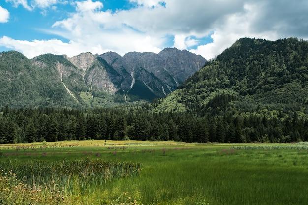 Campo de grama verde perto de árvores verdes e montanha sob o céu azul durante o dia