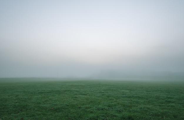 Campo de grama verde sob o céu branco e cinza