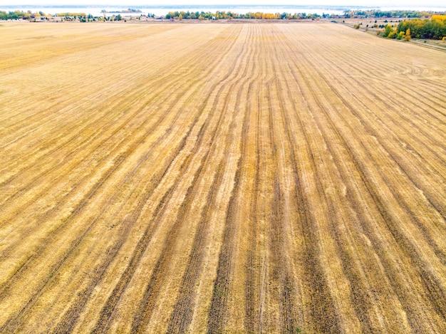 Campo de outono amarelo com um palheiro após a vista superior da colheita. colheita nos campos. estocar feno para o inverno. território de altai da rússia. vista do topo