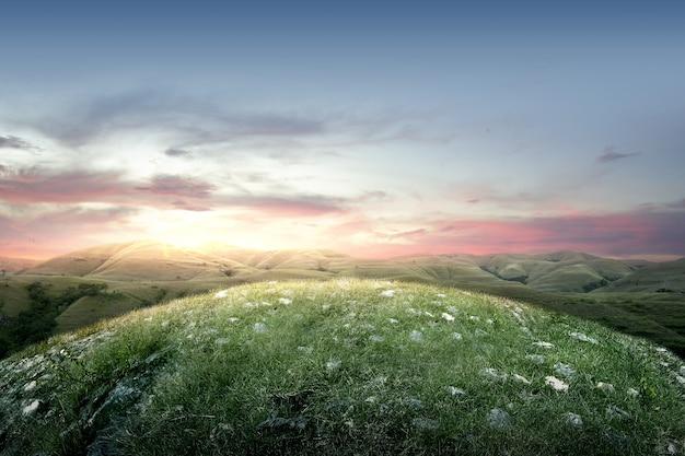 Campo de prado com céu ao pôr-do-sol