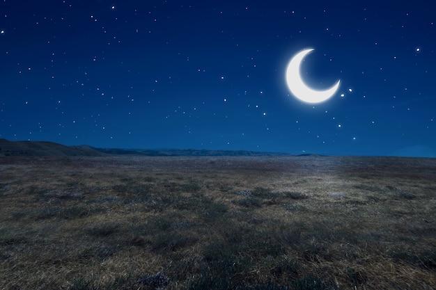 Campo de prado com luar e o fundo da cena noturna