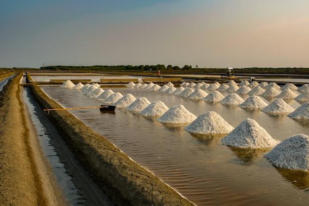 Campo de sal do mar na tailândia