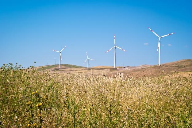Campo de trigo com moinhos de vento